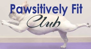 pawsitively-fit-banner-2