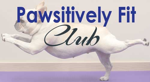 Pawsitively Fit Club