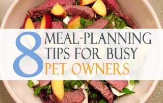 8 meal-planning tips for busy pet owners