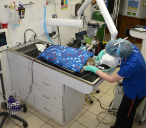State of the art warming devices are used for our patients.