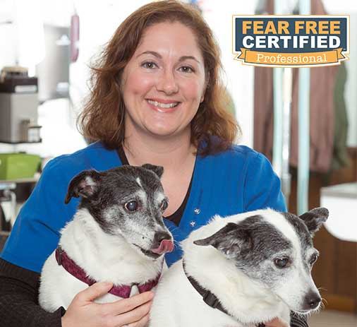 Amy is fear-free certified