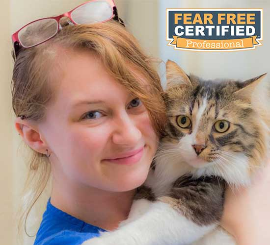 Cassie is fear-free certified.