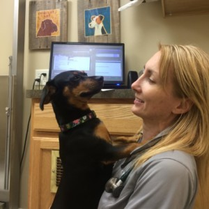 Unspooky Vet Visits with Dr. Kelly
