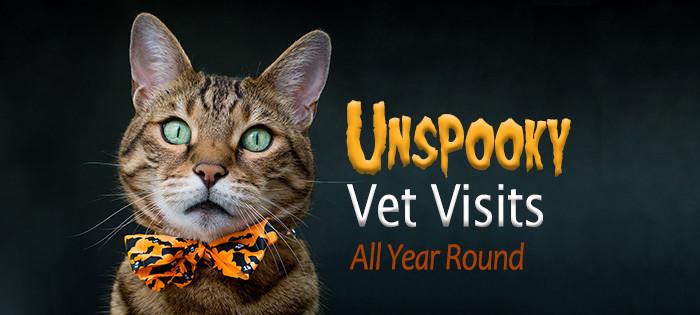unspooky vet visits