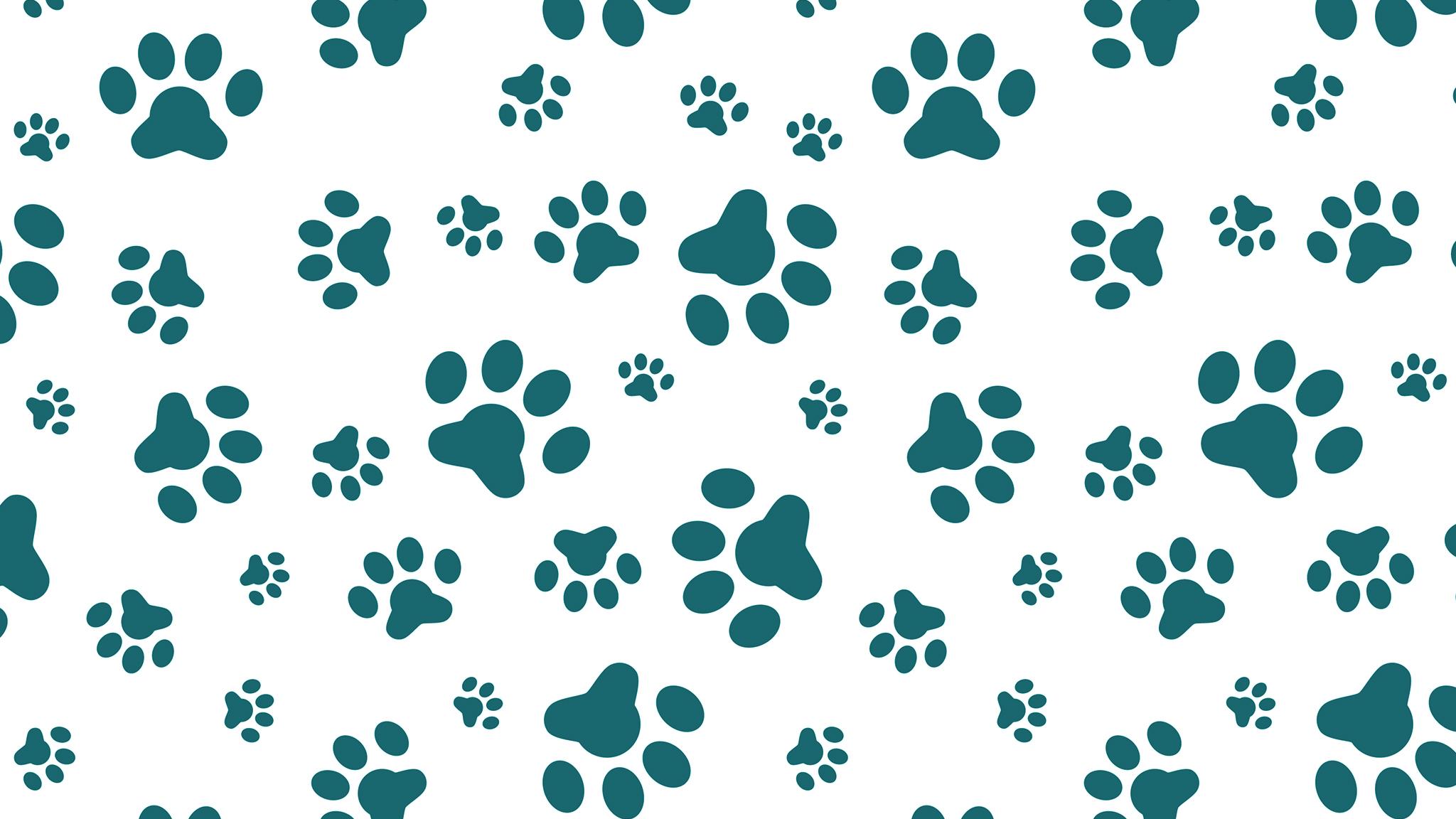 Pawprint Background - Janesville Veterinary Clinic