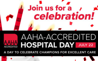 join us for an AAHA celebration