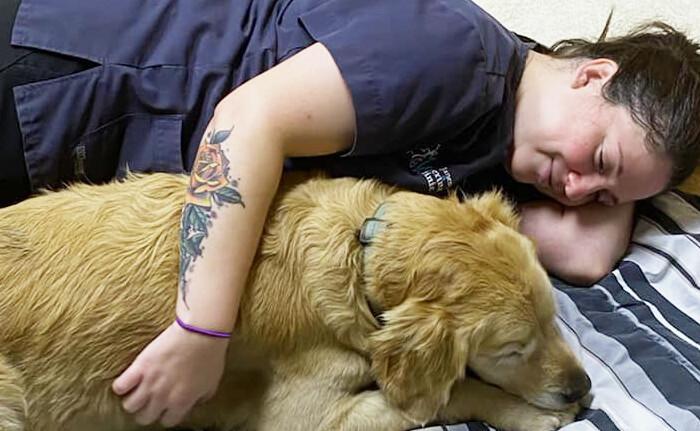 Pet-Only Vet Visit Cuddles